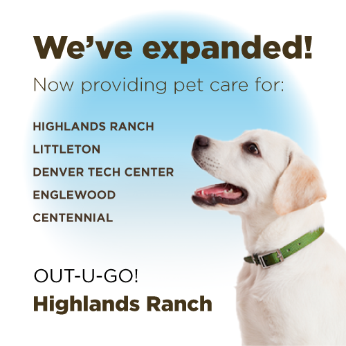 Out-U-Go! Now Open In Highlands Ranch