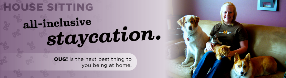 All inclusive staycation - In home pet care and house sitting in Littleton and Highlands Ranch Colorado